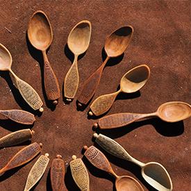 Adam spoons
